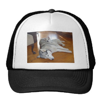 Love in its purest form trucker hat