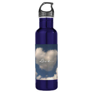 Love in the Air Stainless Steel Water Bottle