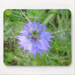 love in the mist flower mouse pad