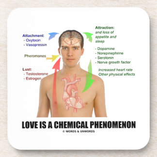 Love Is A Chemical Phenomenon Physiology Beverage Coaster