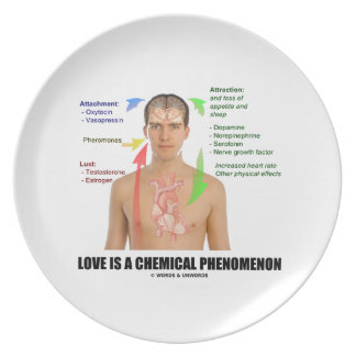 Love Is A Chemical Phenomenon Physiology Dinner Plates