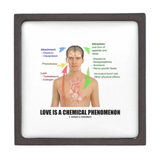 Love Is A Chemical Phenomenon Physiology Jewelry Box
