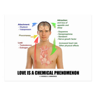 Love Is A Chemical Phenonemon (Physiology) Post Card