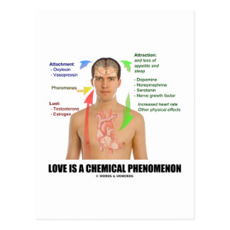 Love Is A Chemical Phenonemon (Physiology) Postcards