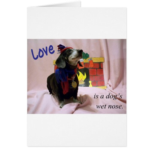 Love is a dog's wet nose card