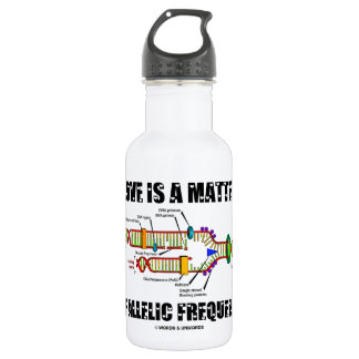 Love Is A Matter Of Allelic Frequency (DNA) Stainless Steel Water Bottle