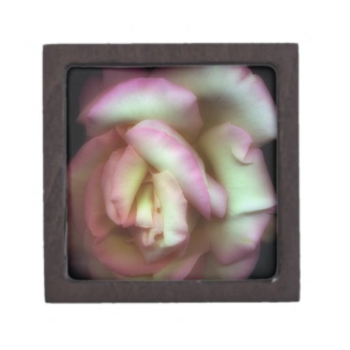 <Love is a Rose> by Nathan Griffith Premium Trinket Boxes