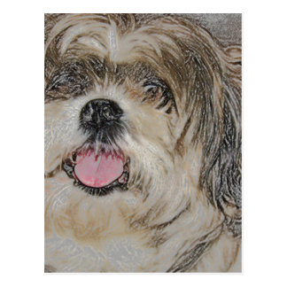 Love is a Shih TzU Postcard