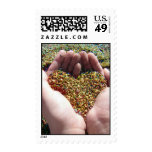 Love is all around us, Colorful Beach Sand Heart Stamps