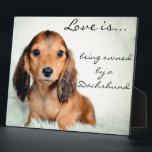 "Love is being owned by a Dachshund-Pixel Plaque<br><div class=""desc"">Love is being owned by a Dachshund- Pixel Lovebug Doxie Keepsake Plaque</div>"