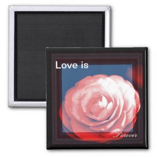 Love is Forever Camellia Rose Magnet