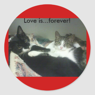 Love is...forever! classic round sticker