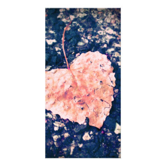 Love is Fragile Card