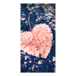 Love is Fragile Photo Greeting Card