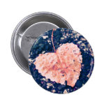 Love is Fragile Photography Button