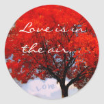 Love is in the air... classic round sticker