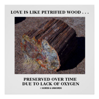 Love Is Like Petrified Wood ...Preserved Over Time Poster