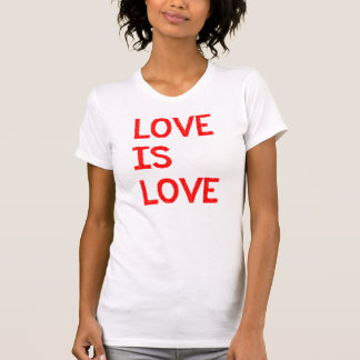 Love Is Love Human Gay Marriage Equality Rights T Shirt
