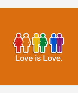 LOVE IS LOVE ORANGE T SHIRTS