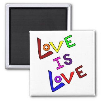 LOVE IS LOVE (Plain and Simple - angled) ~ Fridge Magnet