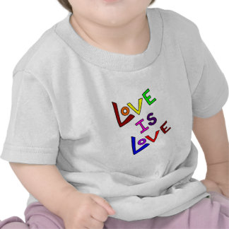 LOVE IS LOVE (Plain and Simple - angled) ~ Shirts