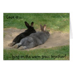 Love is ...., .... lying on the warm grass toge... cards