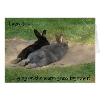 Love is ...., .... lying on the warm grass toge... greeting card