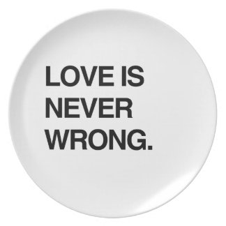 LOVE IS NEVER WRONG PARTY PLATE