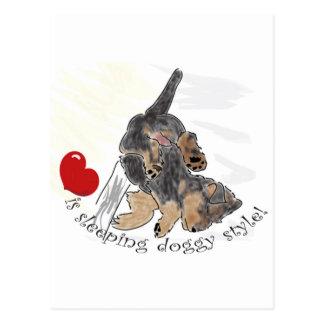 Love is sleeping doggy style. postcard
