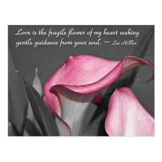 Love is the fragile flower of... postcard