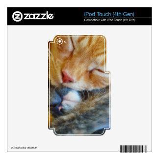 Love Is... Two Sleeping Kittens Cat-lovers Gift iPod Touch 4G Skin
