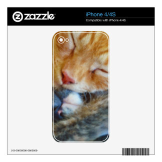 Love Is... Two Sleeping Kittens Cat-lovers Gift Skin For iPhone 4S