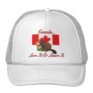 Love It or Leave It Mesh Hat