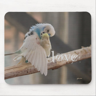 Love / Kissing Love Birds Photo Custom Mouse Pad