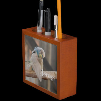 Love / Kissing Love Birds Photo Custom Pencil Holder