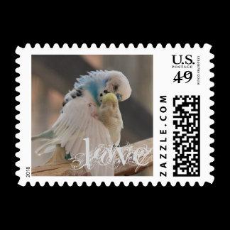 Love / Kissing Love Birds Photo Custom Postage