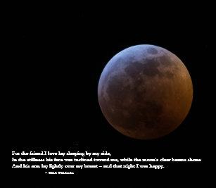 Eclipse Cards | Zazzle