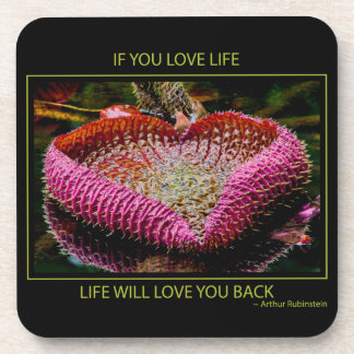 Love Life Motivational Quote Coaster