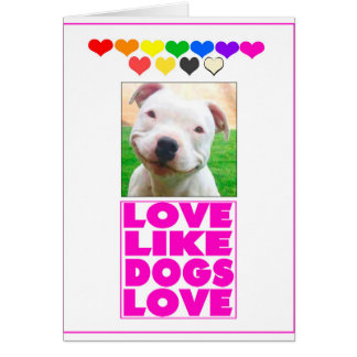 Love Like Dogs Love Card