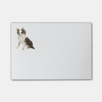Love Long Hair Chihuahua Puppy Dog Post-it® Notes