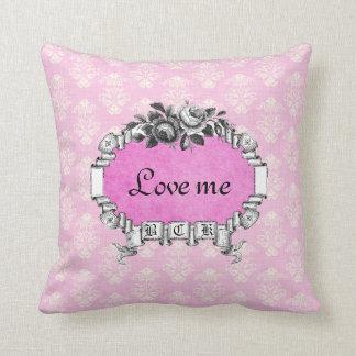 Love Me Love My Cat Vintage Rose Pink Ribbon Frame Pillows