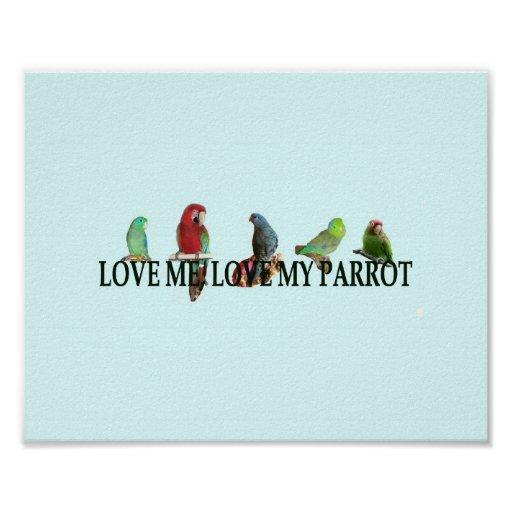 Love Me, Love My Parrot Posters
