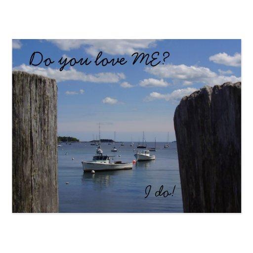 Love Me Maine Postcard