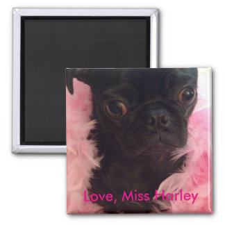 Love, Miss Harley 2 Inch Square Magnet