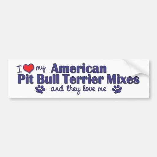 Love My Amer. Pit Bull Terrier Mixes (Multi Dogs) Bumper Stickers