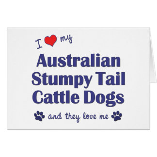 Love My Aust. Stumpy Tail Cattle Dogs (Multi Dogs) Card