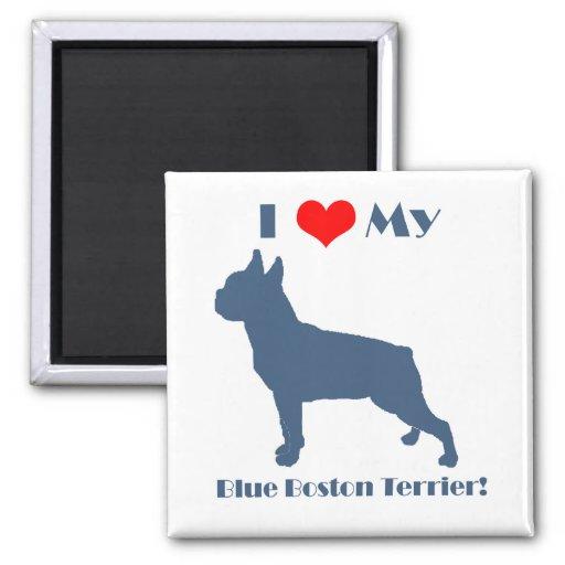 Love My Blue Boston Terrier Magnets