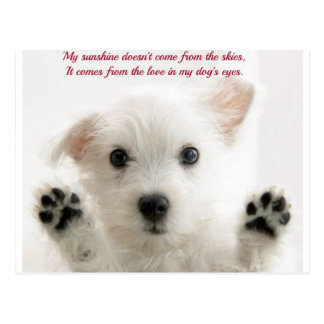 Love my dog post cards
