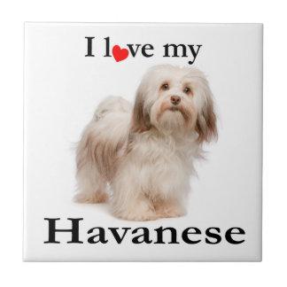 Love My Havanese Tile