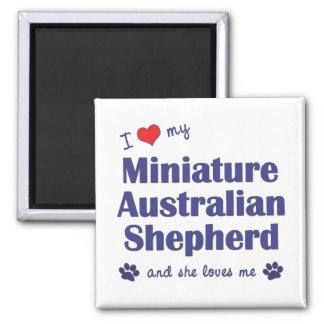 Love My Miniature Australian Shepherd (Female Dog) 2 Inch Square Magnet